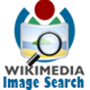 Wikimedia Image Search - Wikipedia API Based